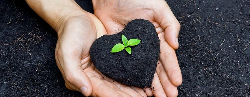 """Biodiversità e ricerca: la """"Rivoluzione Verde"""""""