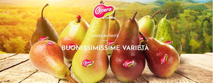 Opera a Futurpera 2019 con tante proposte.