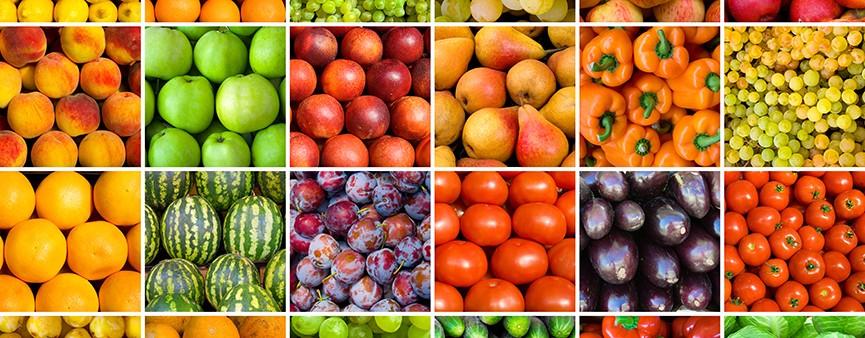 Trend positivo per l'agroalimentare dell'Emilia-Romagna