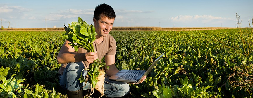 L'Europa punta sui giovani agricoltori