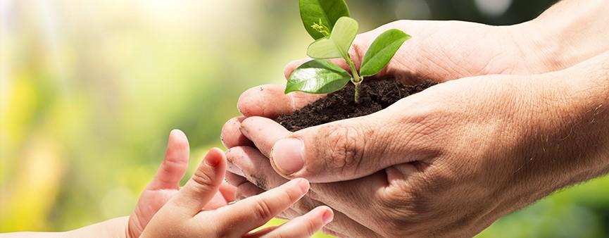 3 giugno: rapporto 2018 sull'agricoltura dell'Emilia-Romagna